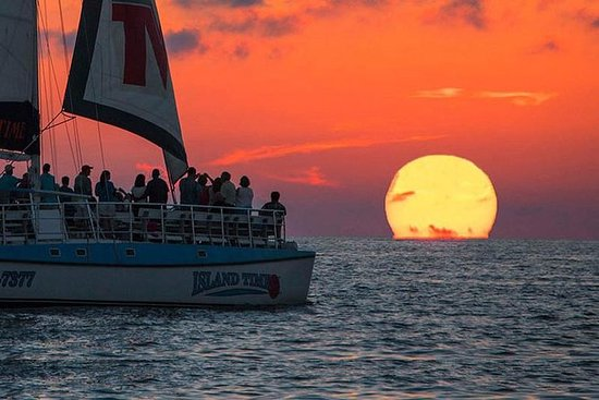 Sunset & Dolphin Catamaran Cruise i...