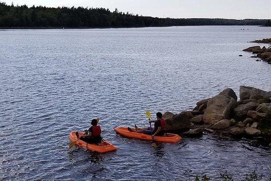 Adult Single Kayak Rental