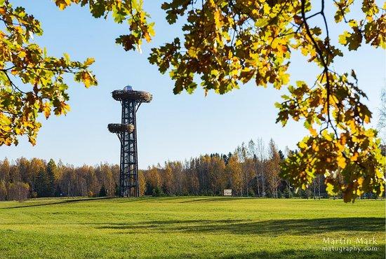 The Pesapuu Watchtower