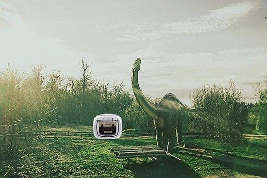 sleeperoo Oplev nat i dinosauriparken...