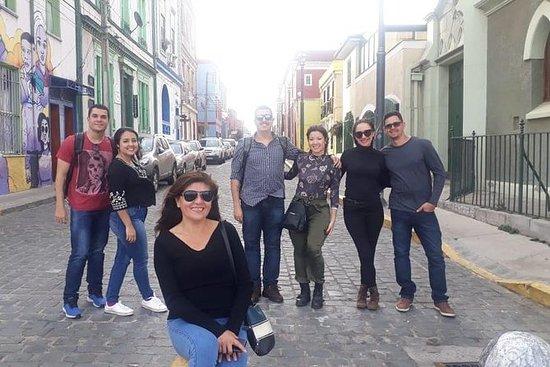 プライベートツアーバルパライソとビニャデルマルチリ