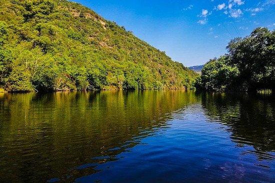Douro Valley Tour - uma experiência...