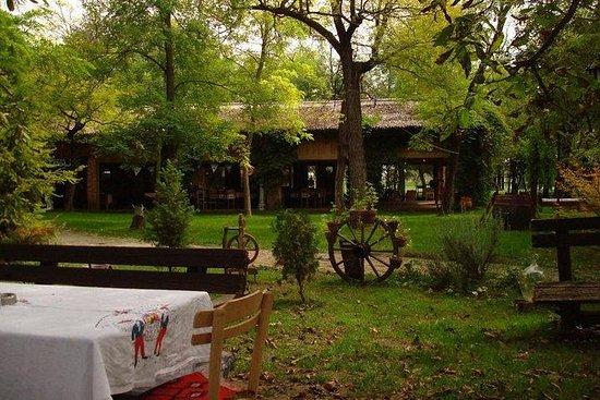 セルビアを訪問:ベオグラードオフロード田舎-終日ツアー