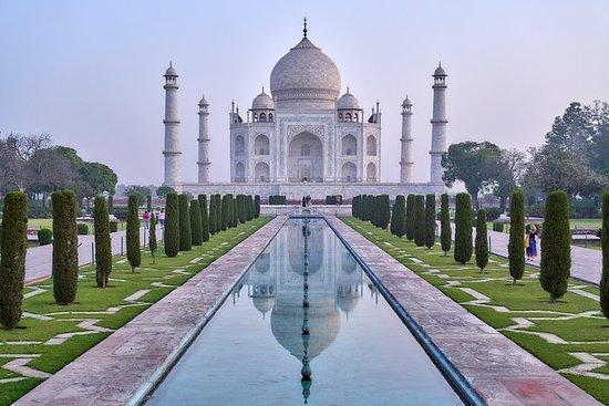 Gita giornaliera privata di Agra Taj