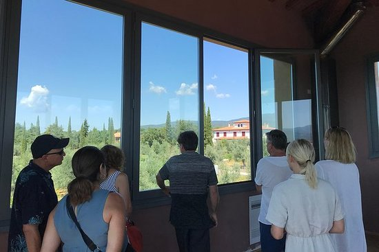 Wine Tour Bolgheri