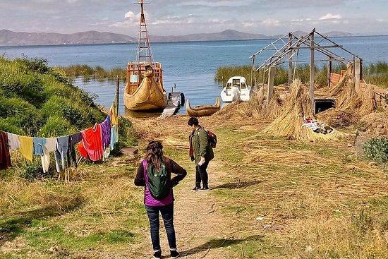 Visite Tiwanacu y el lago Titicaca en...