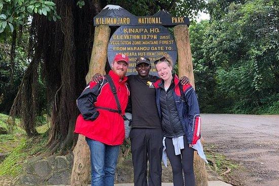 マラングルートを通ってキリマンジャロ山をハイキングする1日ツアー