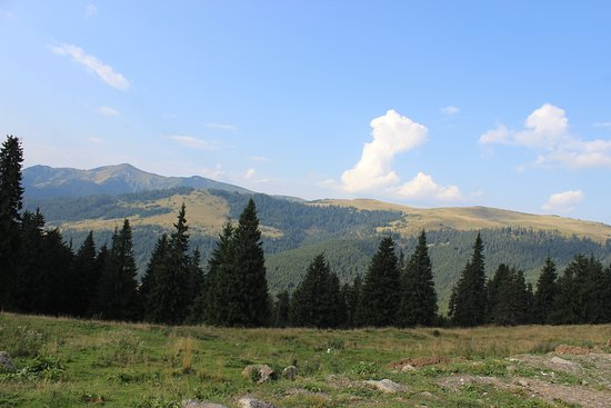 Maramures County, โรมาเนีย: The view from the pass.