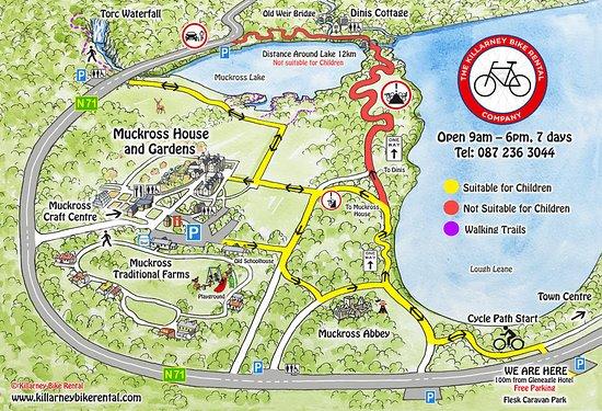 Killarney Bike Rental