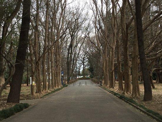 Ageoundo Park