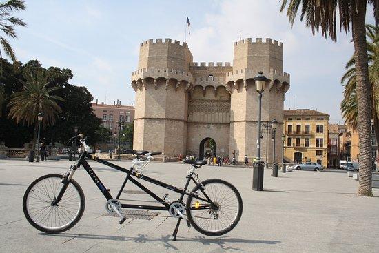 Cauce Bikes