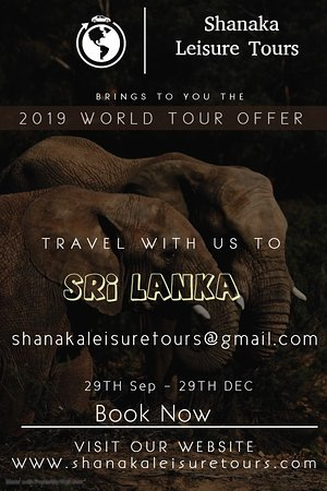 special holiday package with promotion
