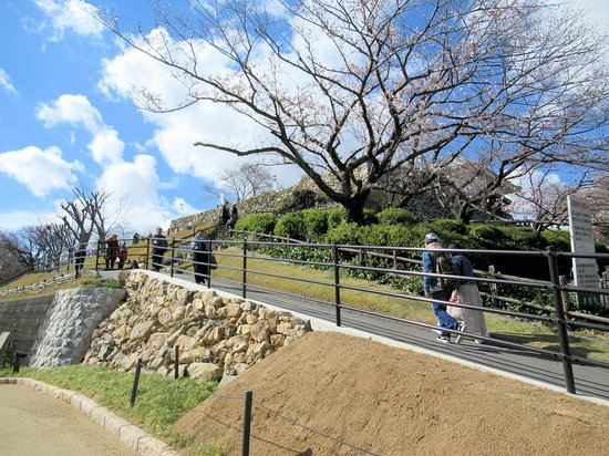 Statue of Tokugawa Ieyasu