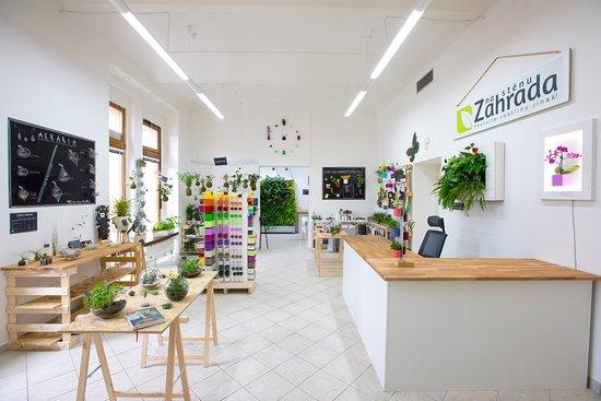 10 Melhores hotéis proximo ao Zahrada na stenu, Praga no