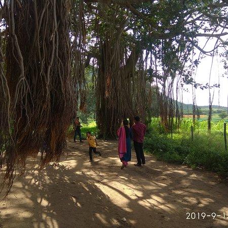 Gopalswami Hill, Gundlupeta.