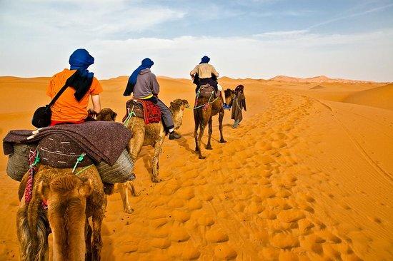 Culture Desert Tours