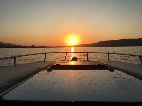 Artemis Boat Trips