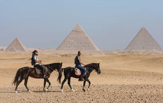 مدرسة ركوب الخيل  القاهرة
