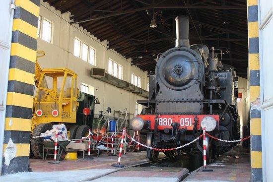 All'interno della riposano vecchie locomotive restaurate e totalmente funzionati