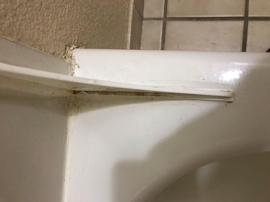 mold and hair in the shower/tub