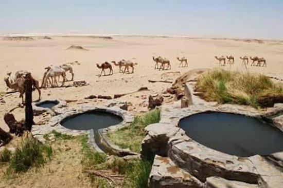 Bawiti, Egipat: getlstd_property_photo