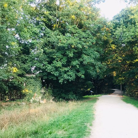 Grigny, Frankrike: Small forest for evening walk