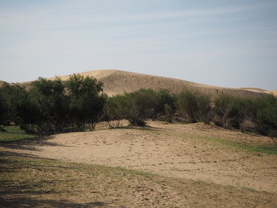 Bulgan Province, Mongolië: All of a sudden, we found sand dunes in the middle of prairies.