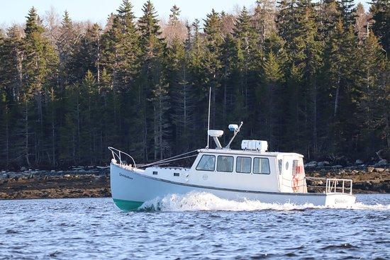 Quicksilver Water Shuttle