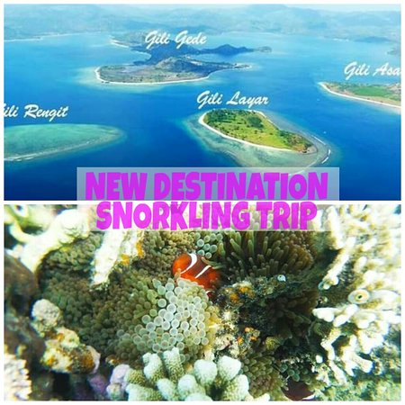 Gili Asahan, Indonesia: Proudly we introduced to all you guy's We not only have gili terawangan We have nes destination for water activity and snorkling trip. Pure island silent place and good  Deep water panorama with cute fish and life coral..  Interest contact me omjay Lombok private trip Plan your holiday with us We serve you in local touch Trust me..your never forgetten you trip in lombok with us...