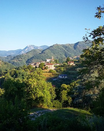 Fosciandora, Italia: A wonderful week at Vallecchia Sotto.