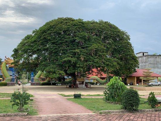 Wat Phothikyan Phutthaktham