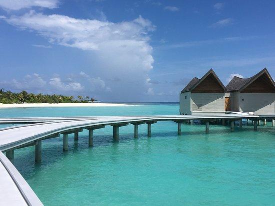 Pool - Movenpick Resort Kuredhivaru Maldives Photo