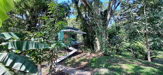 Tarcoles District, Costa Rica: Habitación Cuádruple de Montaña, Carara Lodge