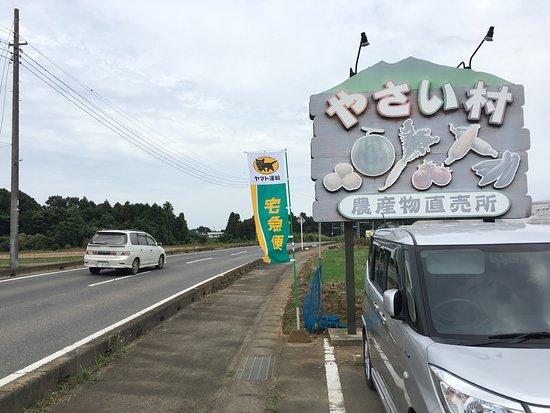 Nosambutsu Chokubaijo Yasaimura