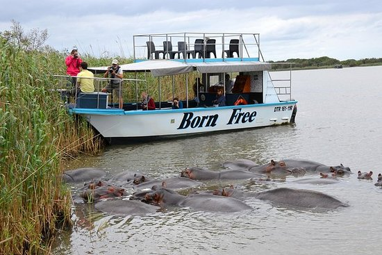 ダーバンからセントルシアIsimangalisoボートサファリデイツアー