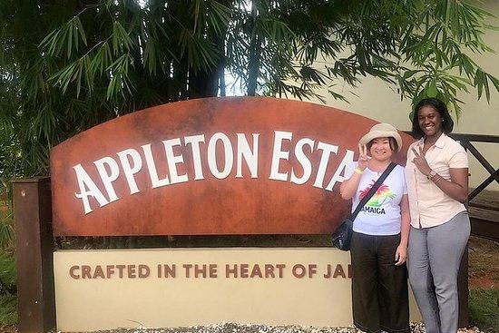 Visite à: Appleton Estate et YS Falls...