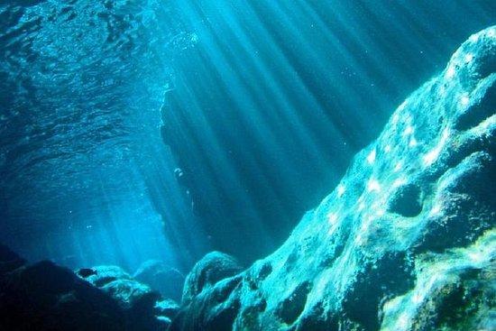 Saipan Grotto Cave Snorkling