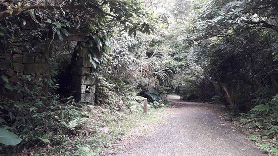 Diaoshan Trail
