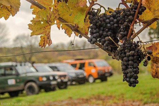 Czech Jewels Tour: Garnets, Wine and ...