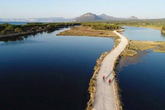 使用電動山地自行車從山丘到Oasi Biderosa和Capo Comino