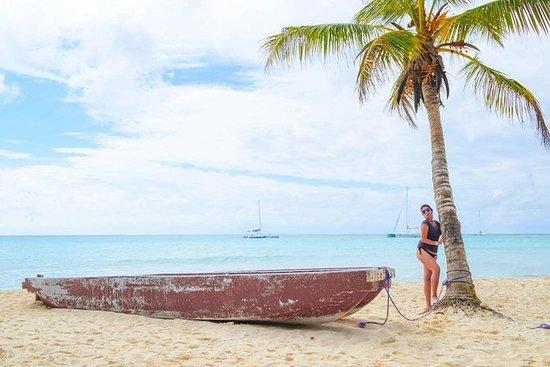 Isola di Saona VIP - Escursione All
