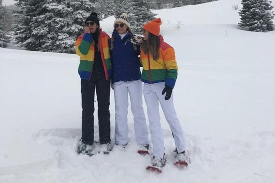 Excursión guiada con raquetas de nieve