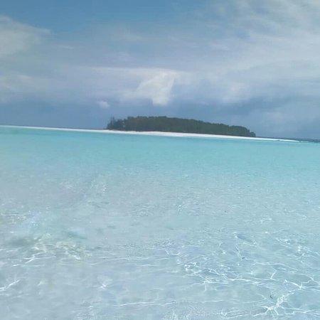 Мнемба, Танзания: MNEMBA. ..Una delle escursioni più belle di Zanzibar...😍 Snorkeling intorno a Mnemba e poi pranzo sulla spiaggia selvaggia di Muyuni 👍