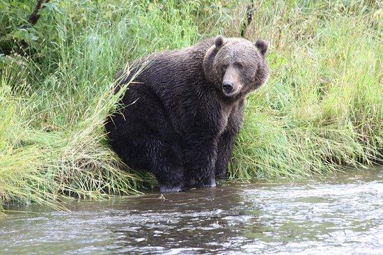 Karluk, AK: Fishing is exhausting!