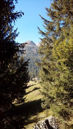 Chiareggio, Italy: Panorama pian del lupo...