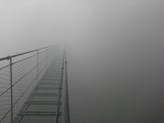 "Ponte ""Avis''"