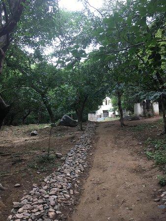 Mangar, India: Way to the samadhi
