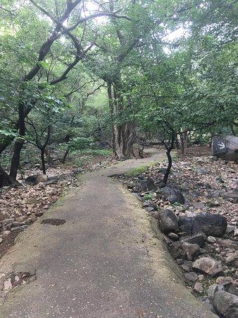Mangar, India: Way to the cave