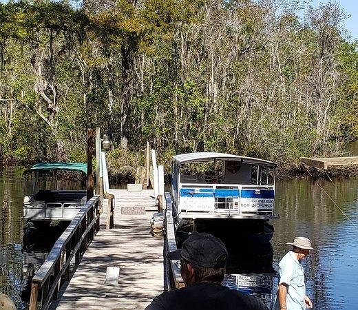 ワッカモア川自然&野生動物ツアー