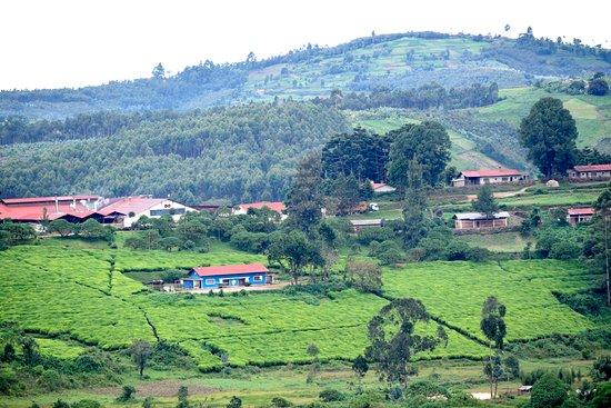 Bururi Province, Burundi: Eco-friendly travel for a sustainable tourism: With widespread tourism across the East Africa region, we need to acknowledge the continued growing pressure on fragile ecosystems and local communities. Sustainable tourism that seeks to fully address these sensitive issues especially is something tourists can as well aspire to.